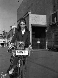 Audrey-hepburn
