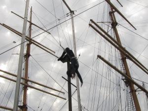 trapeze two