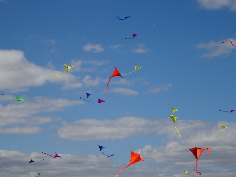 kites parents 13